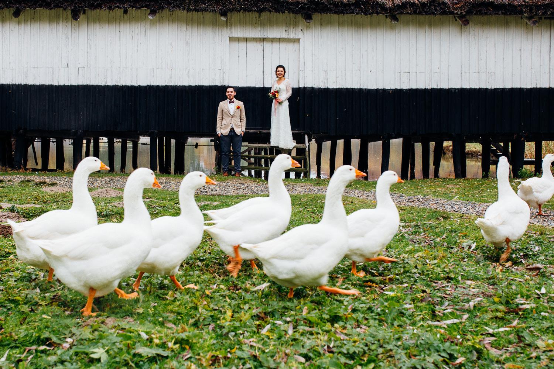 david-damaris-fotograf-nunta-sibiu-1098