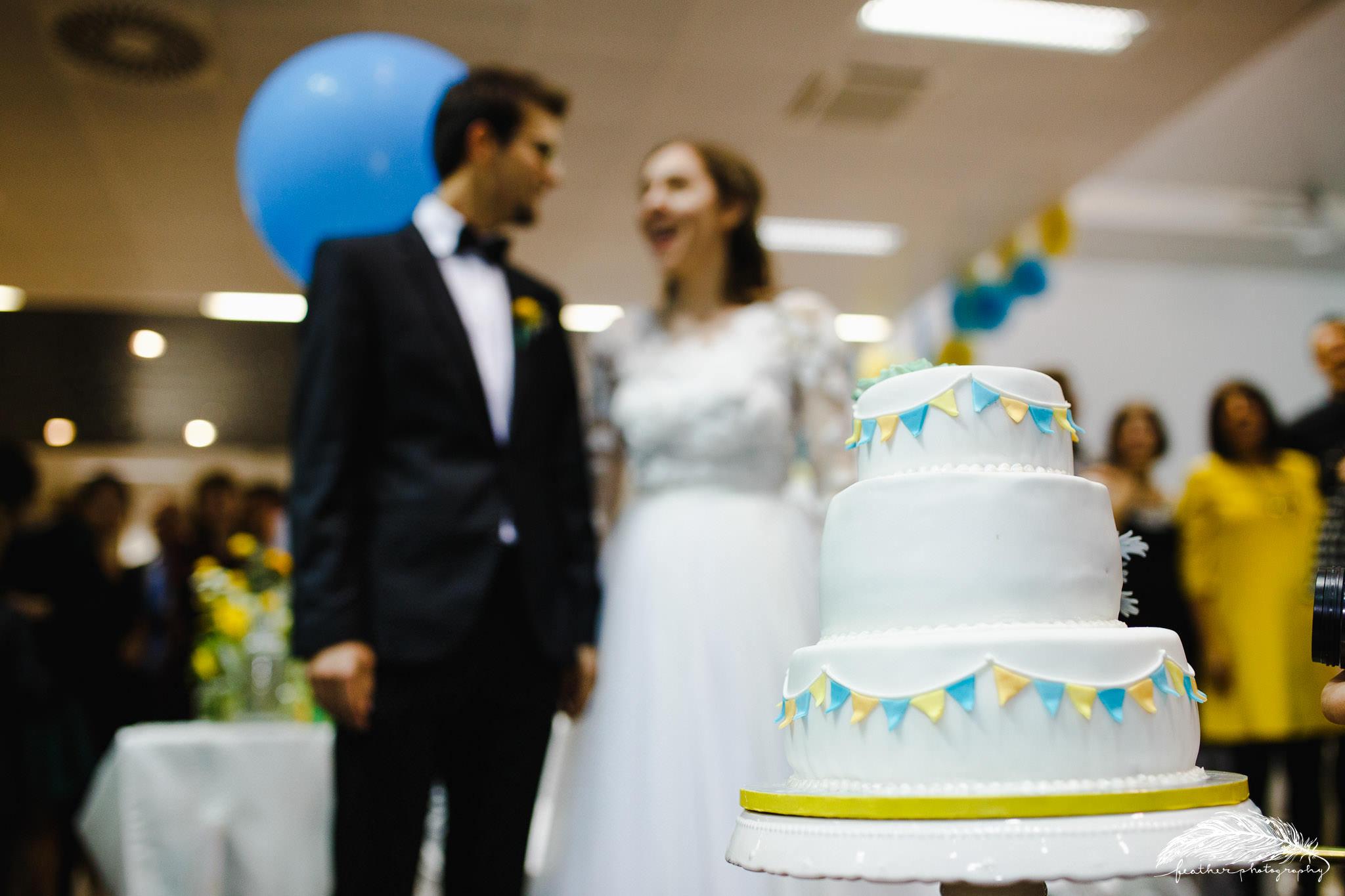 Dorin & Eva wedding-1228