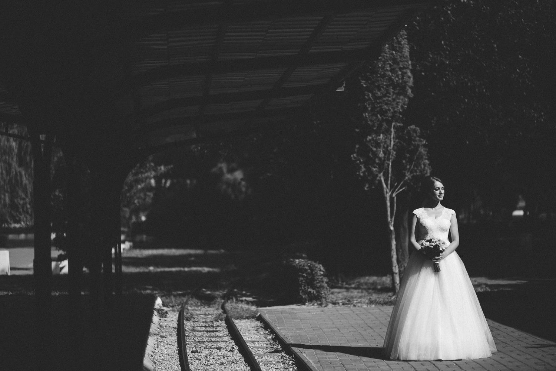 David & Anca nunta Pitesti-1097