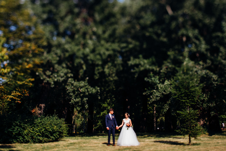 David & Anca nunta Pitesti-1100