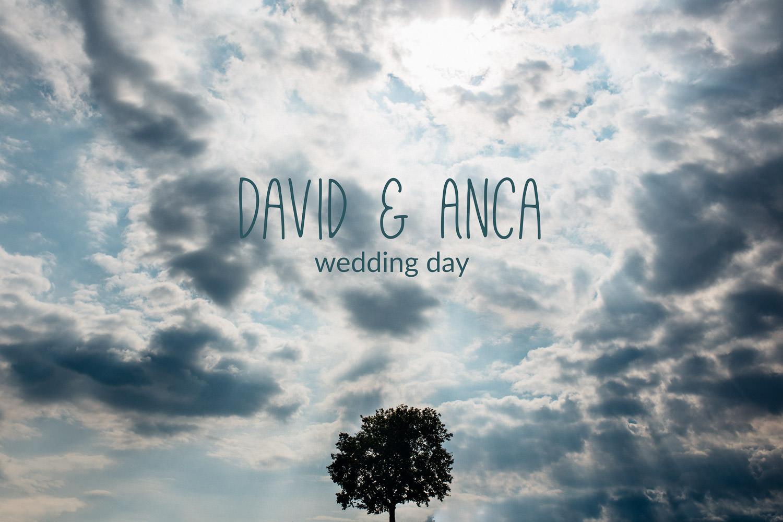 David & Anca wedding-3000