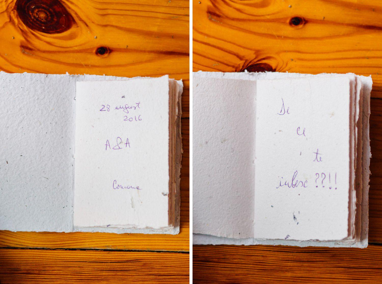 andrei-adelina-wedding-nunta-comana-1017